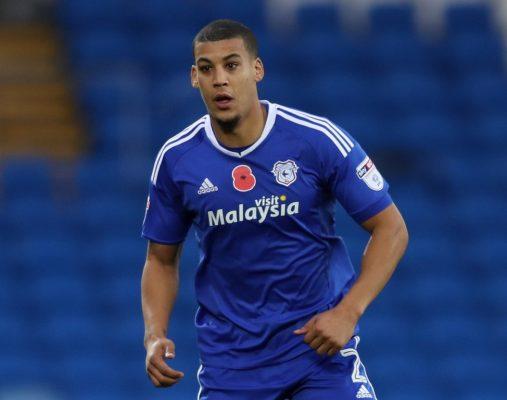 Team-mates: Cardiff City full-back Lee Peltier